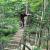 Slip din indre abe løs i Til Tops Klatrepark